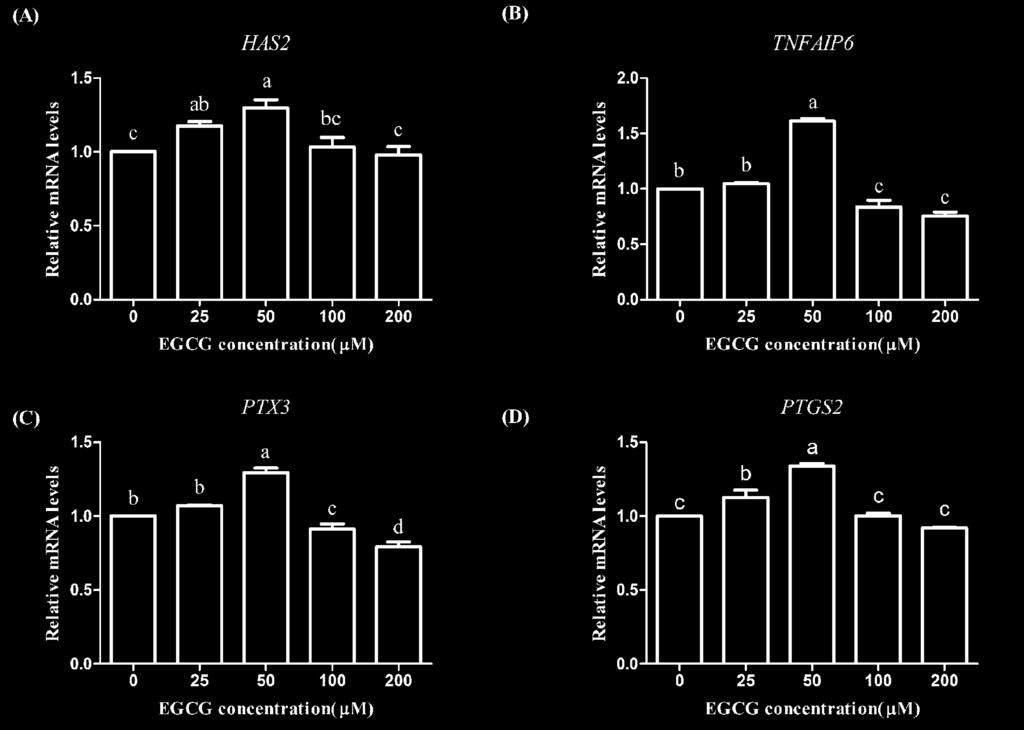 Figure 4. Effects of epigallocatechin-3-gallate (EGCG) on the mrna abundance of cumulus expansion-related genes in mature bovine cumulus-oocyte complexes.