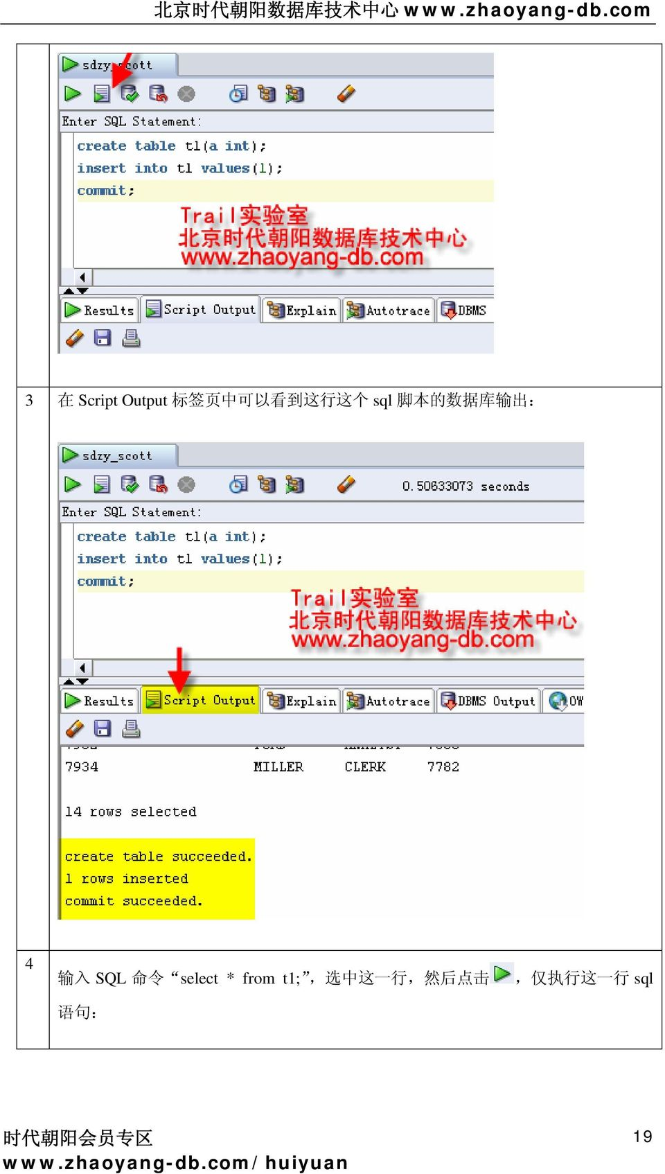SQL 命 令 select * from t1;, 选 中 这 一