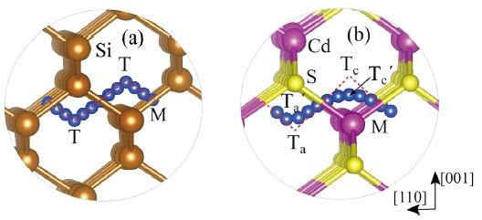 s-d coupling is able to explain all the diffusion behaviors of Cu and Ag in covalent to ionic semiconductors.