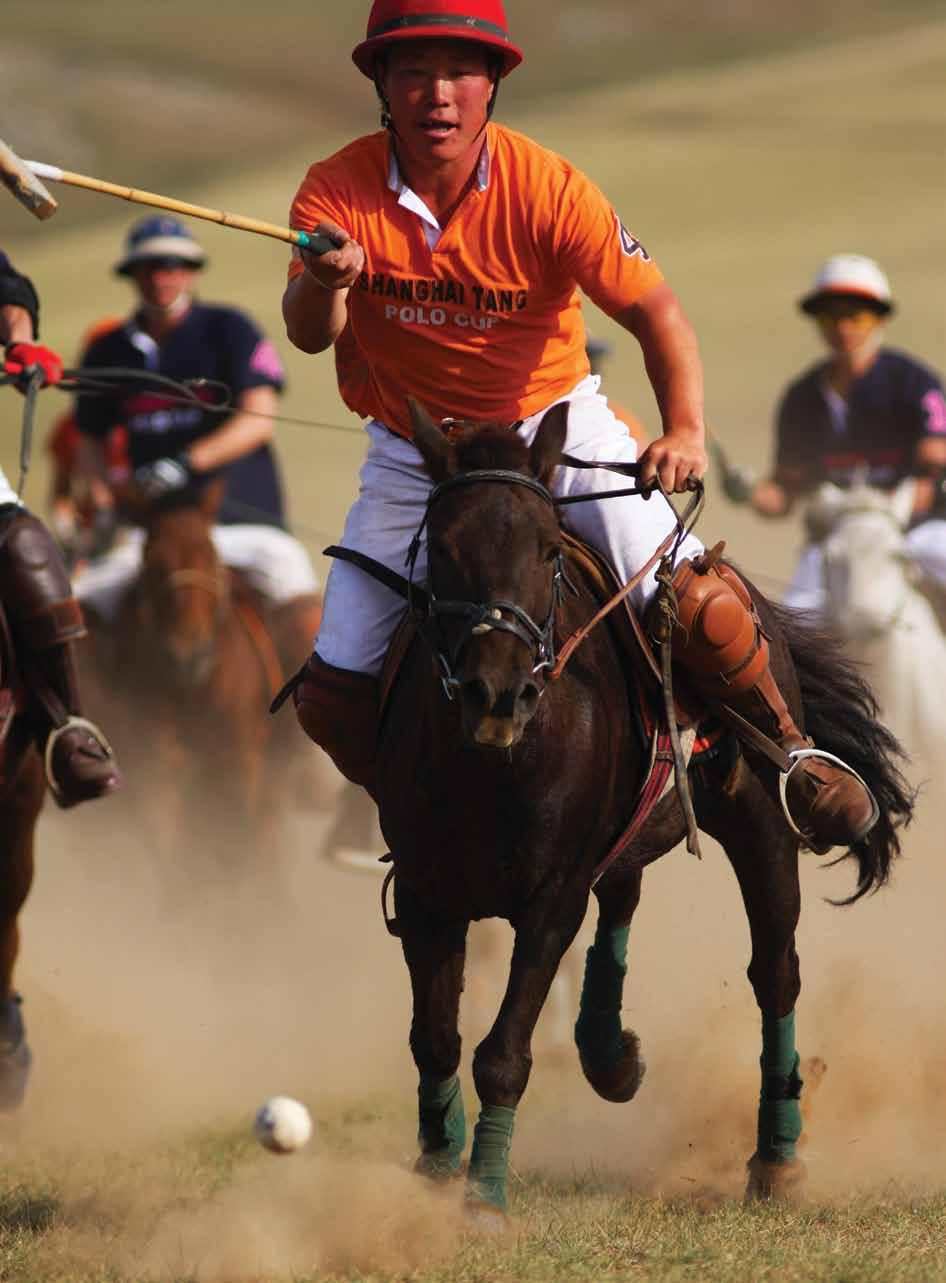 Of all the possible candidates for the land of polo s origin, Mongolia is generally accepted as the most likely.