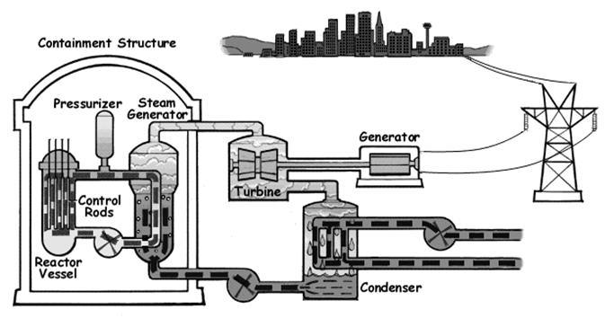 The hot water is pumped into a heat exchanger called steam generator, which allows the primary coolant to heat up and boil the secondary coolant (shown as the loop steam generator