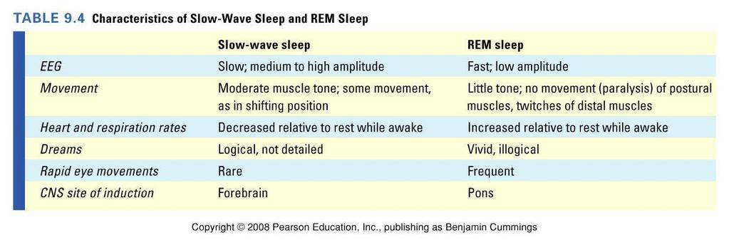 Slow Wave and REM Sleep There are two phases of sleep whose names depend on whether or not the eyes move behind the closed eyelids: NREM (non-rapid eye movement) 非快速動眼期 and