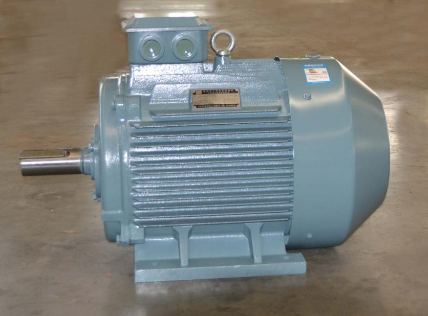 SM Range Three Phase Induction Motor