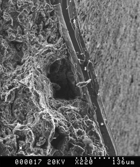 Scanning Electron Microscope Electron source generates electrons.